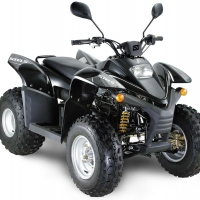 Запчасти для квадроцикла Stels ATV 100RS